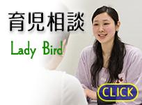 育児相談<br>Lady Birdのイメージ